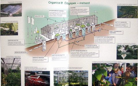 organica4